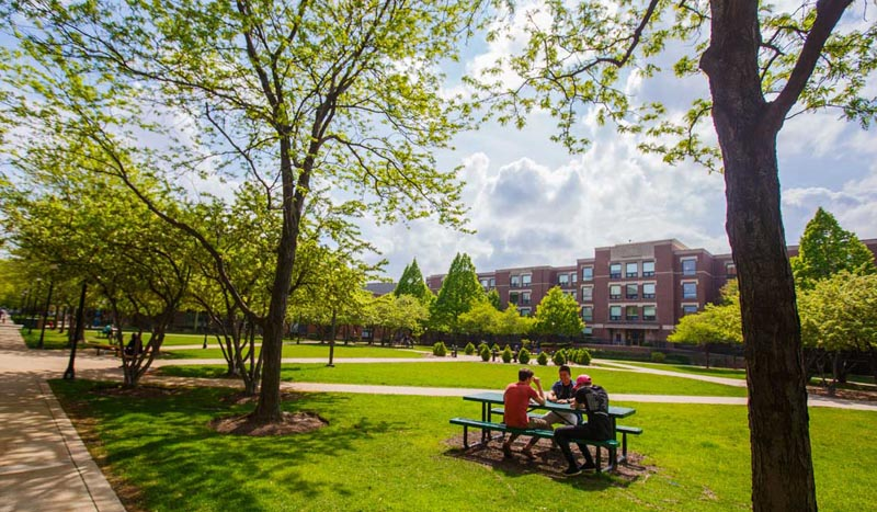 Campuses About Depaul University Chicago